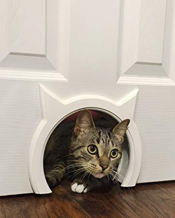 cat-doors